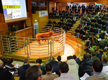 Lanaud : des taureaux encore en vente